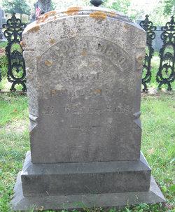 Joseph Augustus Gibson