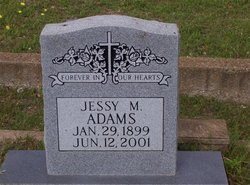 Jessy M Adams