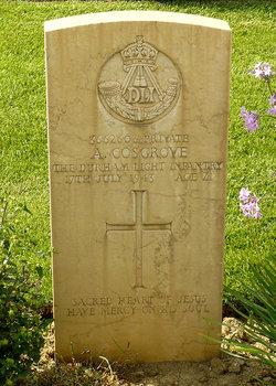 Private Ambrose Joseph Cosgrove