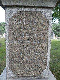 Harold D Ames