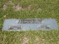 Elin M Anderson