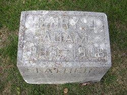 Henry J Adam