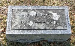 Sarah A. <i>Brown</i> Babcock