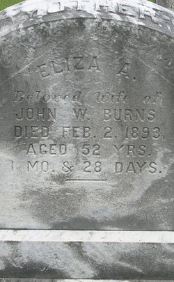 Eliza Anna <i>Cooper</i> Burns
