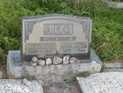 Aleksander Aho