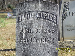 Davidson S David Curlee