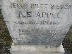 A. E. Appel