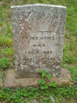 Pliny Arms