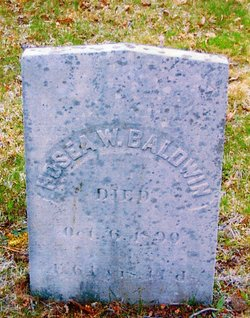 Hosea William Baldwin
