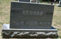 William James Ashton Scott