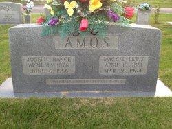 Maggie <i>Lewis</i> Amos