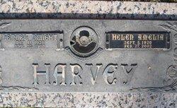 Helen Amelia <i>Hennington</i> Harvey Wright