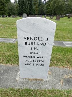 Arnold J Burland