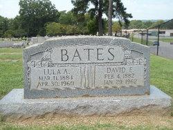 Dave R Bates