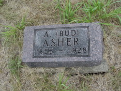 Alexander Bud Asher