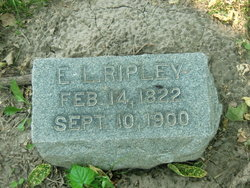 Erastus Lathrop Ripley