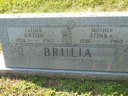 Thelma Catherine <i>Verbonitz</i> Brulia