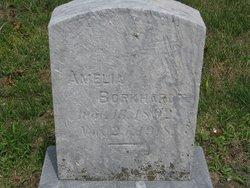 Amelia Borkhardt