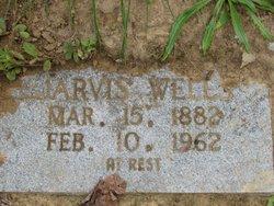 Jarvis Wells