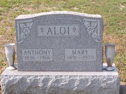 Mary Aloi