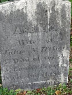 Abbie C <i>Brown</i> Wiley