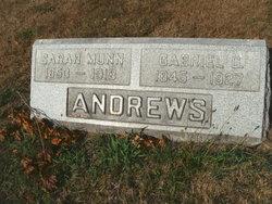 Gabriel G Andrews