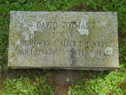David Totman Hawks