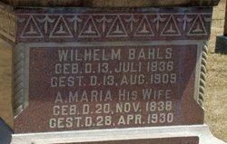 Anna Maria Mary <i>Theuer</i> Bahls