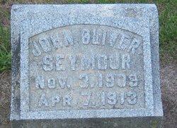 John Oliver Seymour