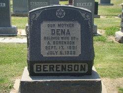 Dena <i>Levenson</i> Berenson