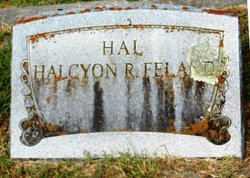 Halcyon R Hal <i>Raney</i> Feland