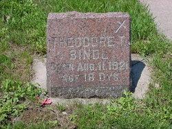 Theodore T. Bindl
