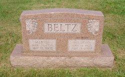 Marvin Lewis Beltz
