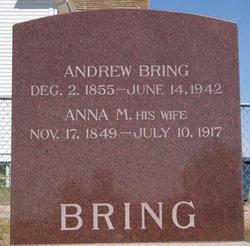 Andew Bring