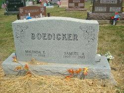 Malinda E <i>Stevenson</i> Boedicker
