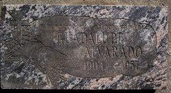 Guadalupe Alvarado