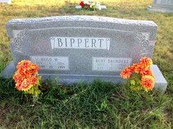 Hugo W. Bippert