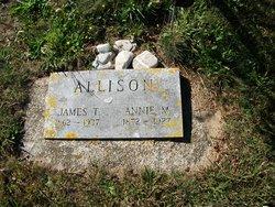 James T Allison
