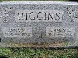 Anna Mary <i>Joyce</i> Higgins