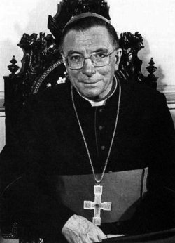 Cardinal Giovanni Saldarini