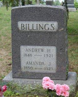 Andrew H Billings
