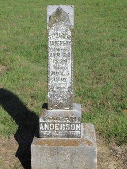 Elizabeth A. <i>Naugle</i> Anderson