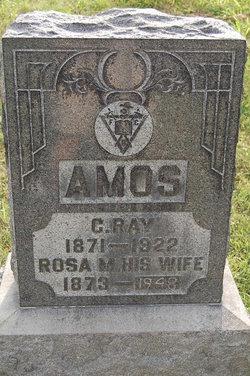 C Ray Amos