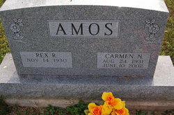 Carmen N Amos