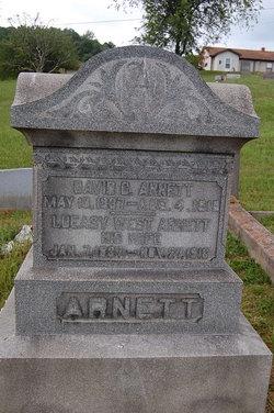 David C Arnett
