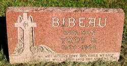 Troy E Bibeau