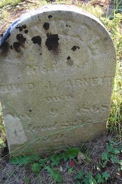 Joanna L Arnett