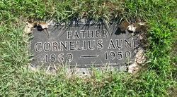 Cornelius Aune