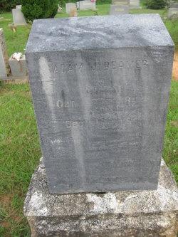 Adam Jefferson Beamer