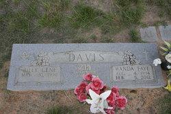 Wanda Faye <i>Posey</i> Davis